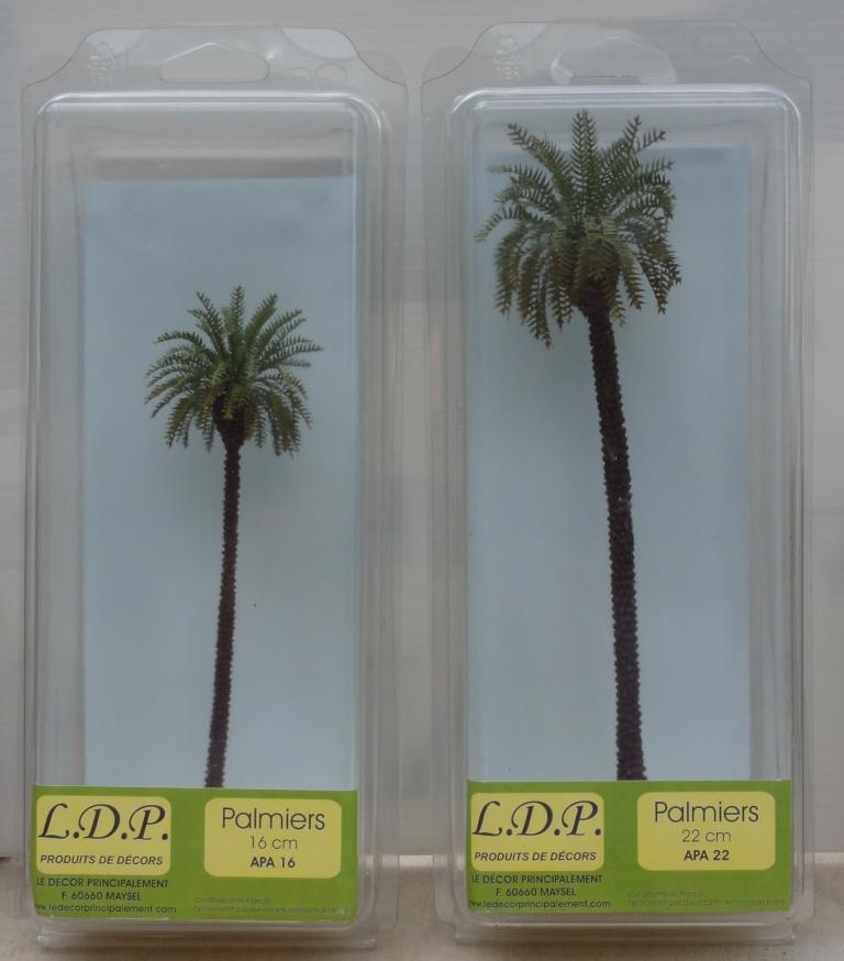 Palmiers 16 et 22 cm