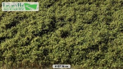 0716xx Buisson bas vert clair