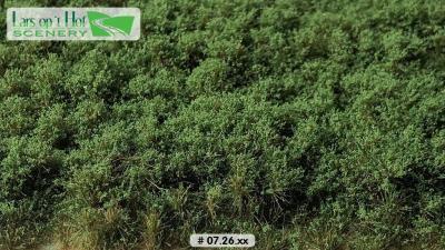 0726xx vert foncé