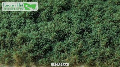 0736xx vert foncé